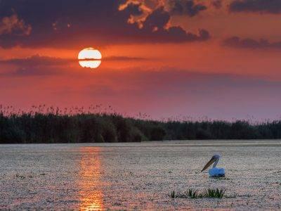 Oferta de Rusalii 2021 la Pensiunea Paradise Delta House - Delta Dunarii